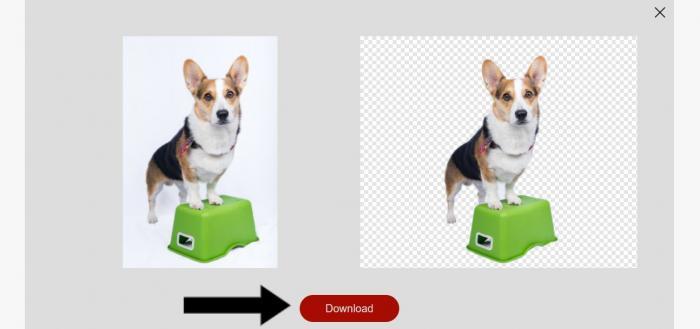 removebg online Download